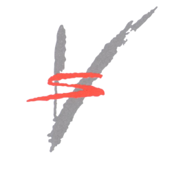 V.S. Servicios Empresariales, S.L.